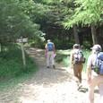 入笠山山頂を目指しましょう