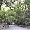 皇大神宮(内宮)本殿への道