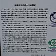 糸魚川ジオパークの歴史