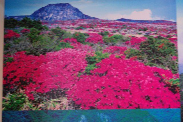 漢拏山(ハルラ山) 固定リンク   漢拏山(ハルラ山)