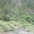 1970年代までチベット族が自然を守った