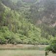 樹正溝の渓谷