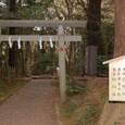 摂社 沼尾・坂戸神社