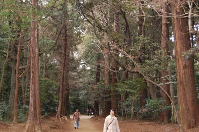 要石(かなめいし)への道