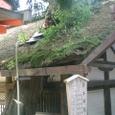 屋根を突き抜ける