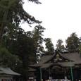香取神宮の杜と拝殿