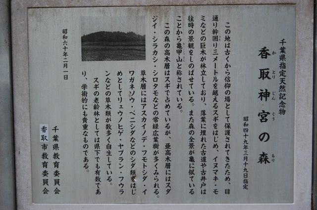 千葉県指定天然記念物 香取神宮の森