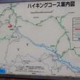 公時神社から金時山、乙女峠への縦走路