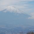 金時山と富士