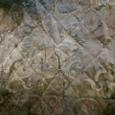 白樺の皮 天馬図