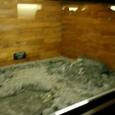 東枕の遺体