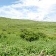 車山湿原と夏の雲