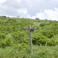 湿原の道標