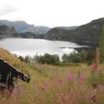 花に囲まれたフィヨルド湖