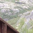木の梯子道