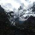 千尋の谷を登る