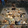 儀式 真珠の貝もあります
