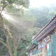 朝日が射す皐蘭寺(コランサ)