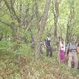 霧のブナの森を縦走するメンバー