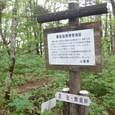 黒岳自然保存地区