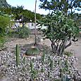 ミトラ遺跡(Mitla) オアハカでは一番重要な祭祀センター