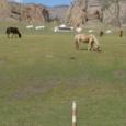 Mongolia_tour_2007_042
