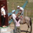 Mongolia_tour_2007_066