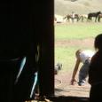 Mongolia_tour_2007_081