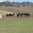 Mongolia_tour_2007_086