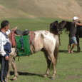 Mongolia_tour_2007_087