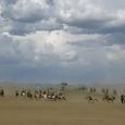 Mongolia_tour_2007_367