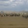 Mongolia_tour_2007_378