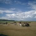 Mongolia_tour_2007_382