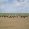 Mongolia_tour_2007_393