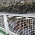 水門で5メータ程度水位を上げる