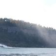 アメリカ滝には無数のカモメが