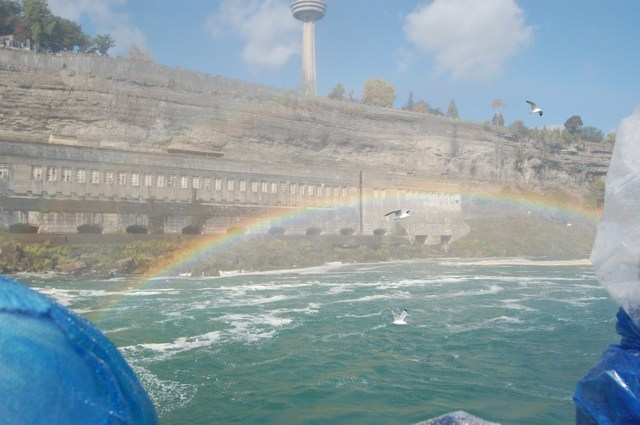 カモメと虹と