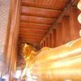 涅槃仏 長さ46メータ