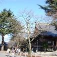 東叡山寛永寺 篤姫のお墓が