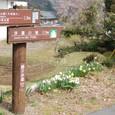 昭和の森会館へ2.3キロ