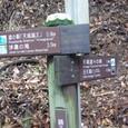 浄蓮の滝から3.5キロ、天城隧道へ4.5キロ
