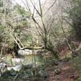 綺麗な水と渓谷の道