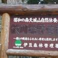 大川端 野営場