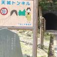 有形文化財 旧天城隧道