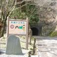 天城トンネル 七滝側