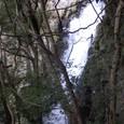 釜滝(かまだる)