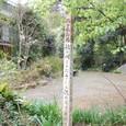踊り子橋 釣り場