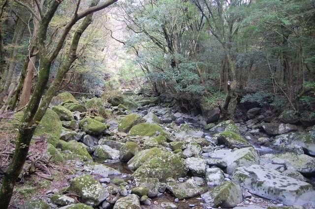 ガレバ渓谷