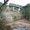 山桜と砂防ダム