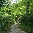 山ノ鼻への道